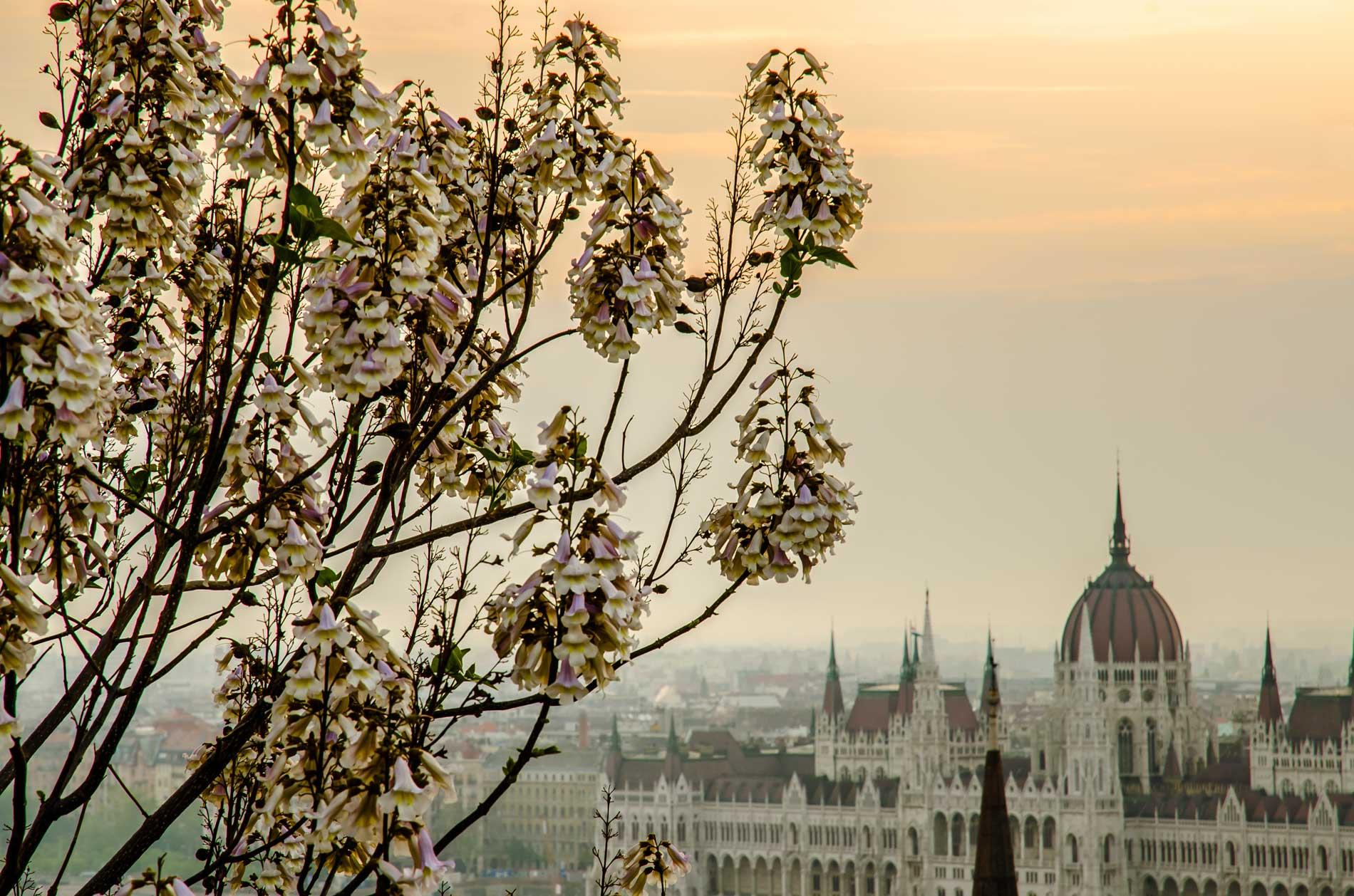 photography_atthary_budapest_monumental_34