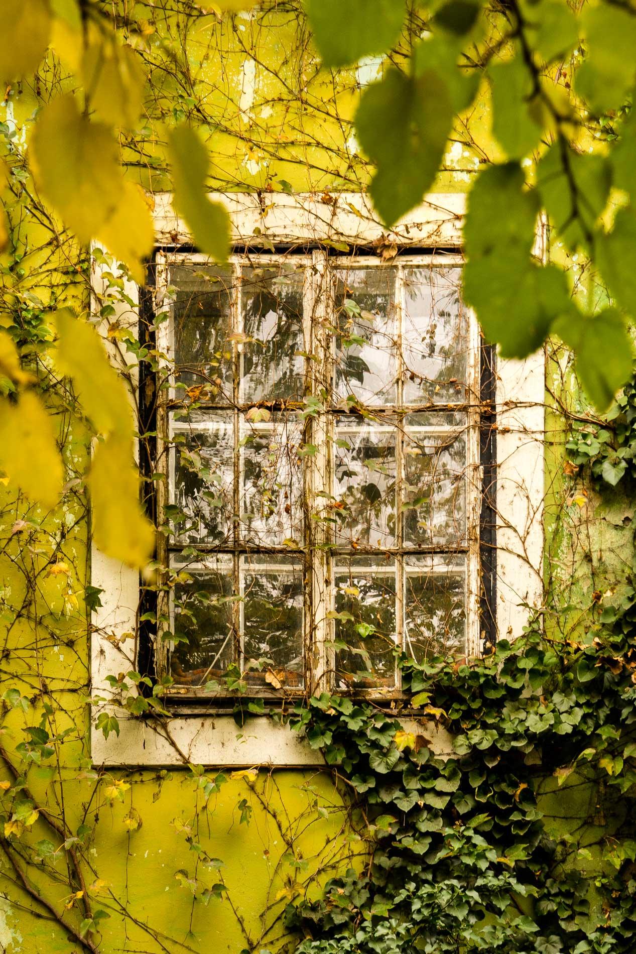photography_atthary_budapest_impression_81